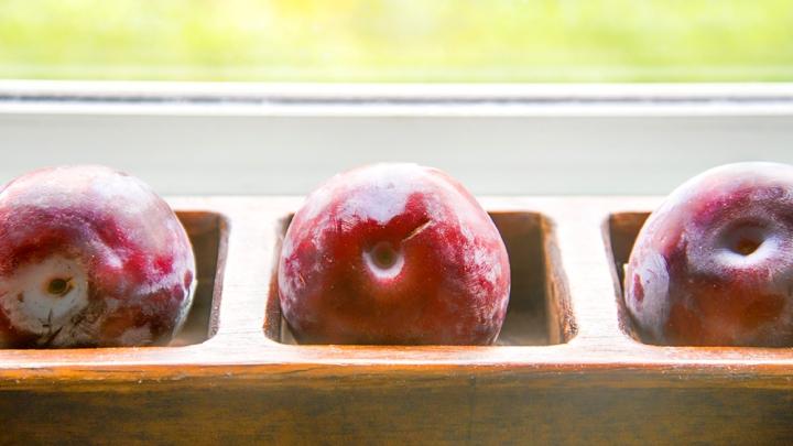 plums-1000