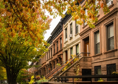 Brooklyn brownstones...