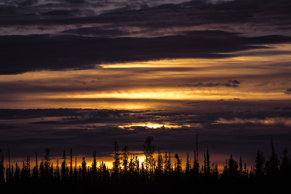 sunset nwt