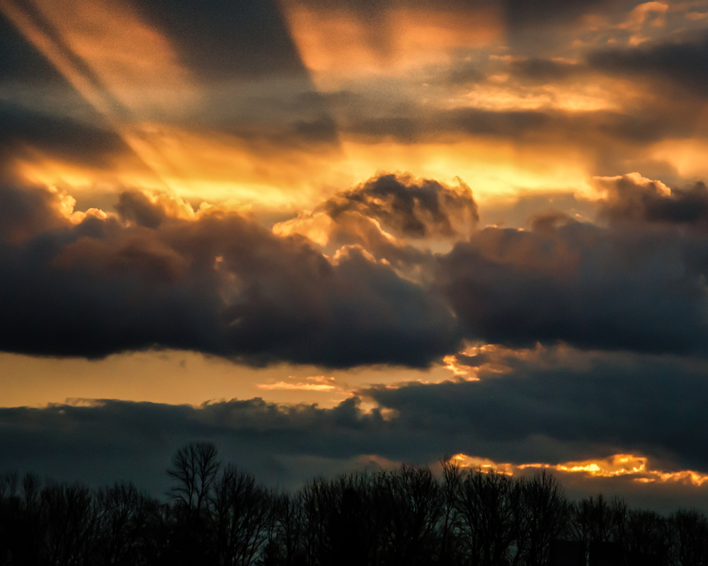 awake heart is like a sky that pours light
