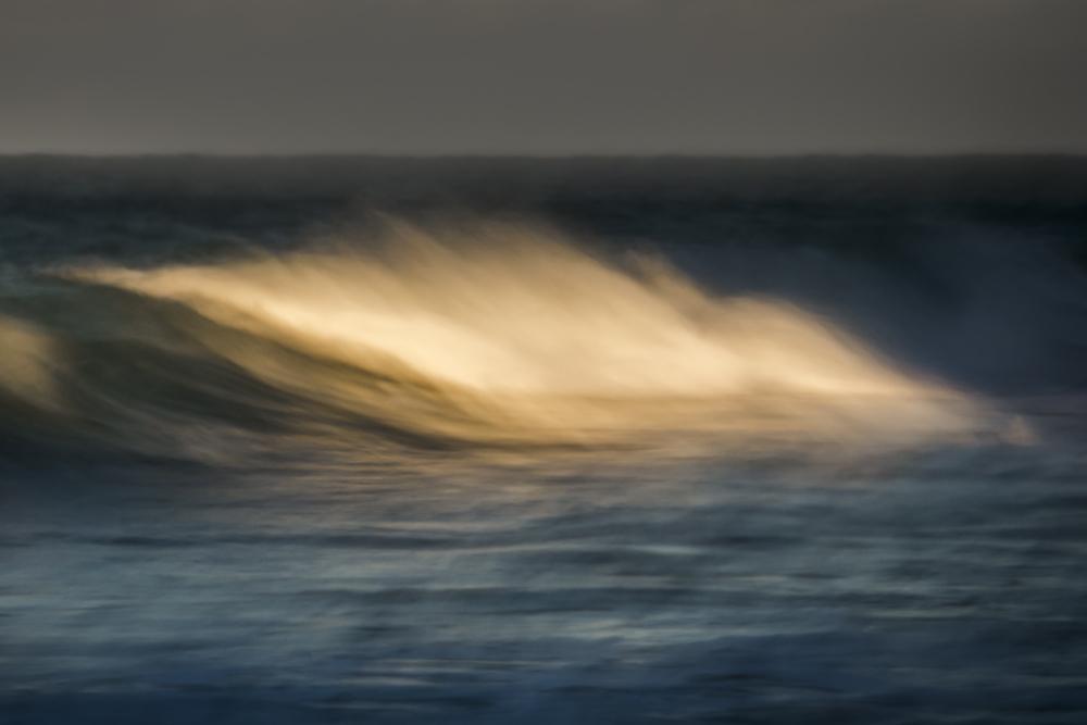 wild wave2