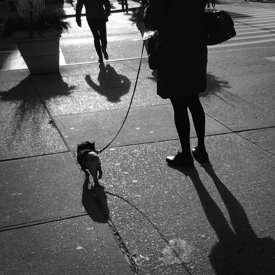 street-corner-shadows