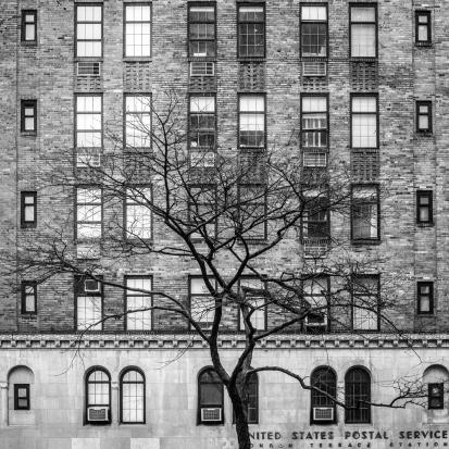 November in New York