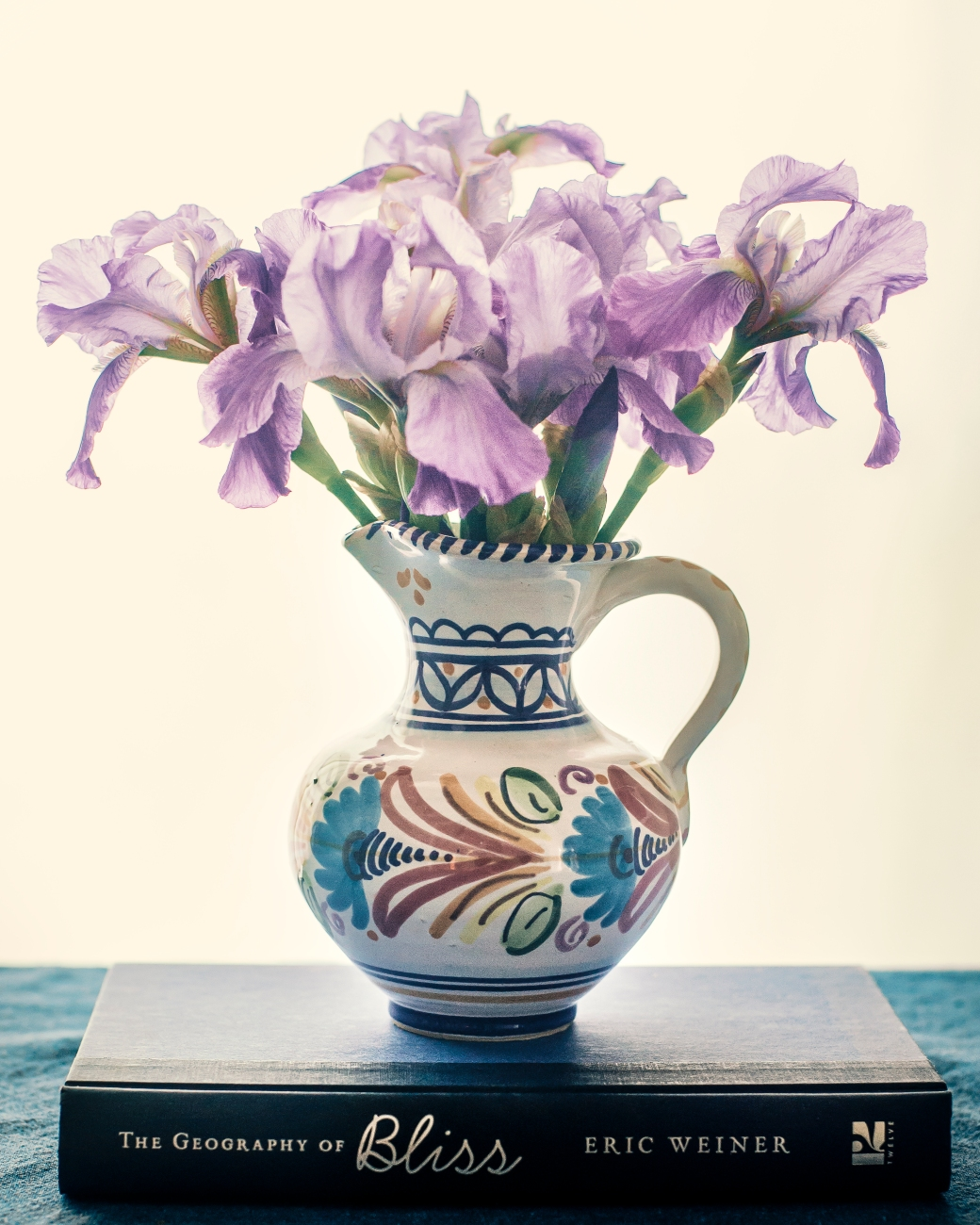 irises in valencia pot2